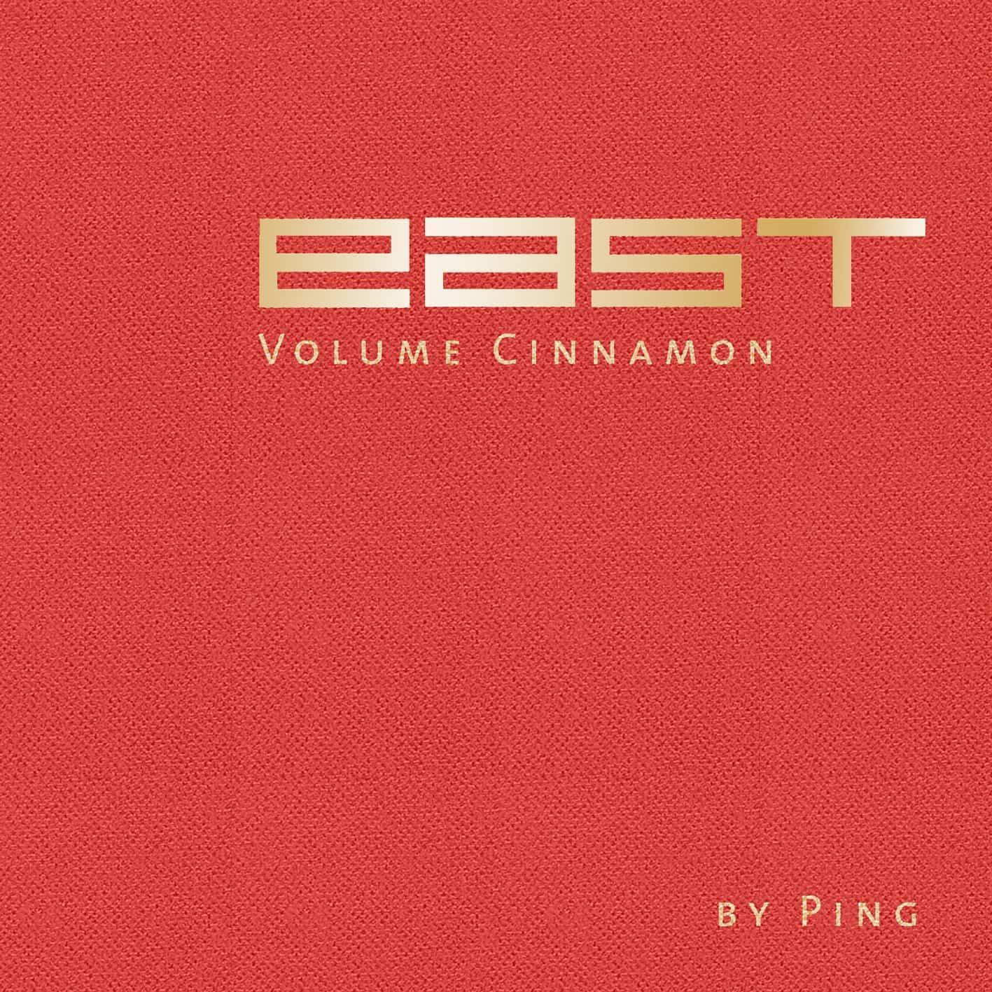 Stefan Feuerhake Feuerhake & DJ Ping – Cinnamon